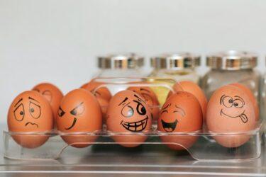 卵は1日いくつまでOK?えっ?5個でも大丈夫?コレステロールは?